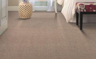 Professional Carpet Cleaners In Metro Atlanta Best
